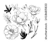 set of peonies with leaves.... | Shutterstock . vector #1418685833