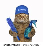The Cat In A Blue Cap With A...