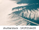 summer with coconut leaves on... | Shutterstock . vector #1419216620