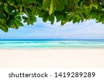 sea   clear water and leaves in ... | Shutterstock . vector #1419289289