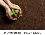 woman holding pot with seedling ... | Shutterstock . vector #1419413390