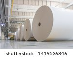 Huge Paper Rolls Placed In The...