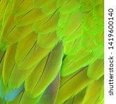 macaw wings  buffon's macaw ...   Shutterstock . vector #1419600140