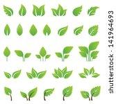 Set Of Green Leaves Design...