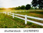 White Concrete Fence In Horse...