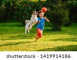 Small photo of Family having fun outdoor with dog and basketball ball