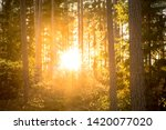 a purposely blurry and over... | Shutterstock . vector #1420077020