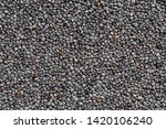 close up of poppy seeds... | Shutterstock . vector #1420106240