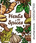 spices and herbs vector color...   Shutterstock .eps vector #1420167533
