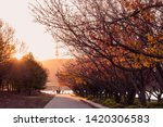 Small photo of Sun setting over the Queen Elizabeth Terrace along the bank of Lake Burley Griffin by the Commonwealth Place, Canberra, Australian Capital Territory, Australia in late Autumn