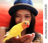 Stock photo young woman with yellow bird on the hand 142043533