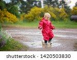 sweet little toddler boy  blond ... | Shutterstock . vector #1420503830