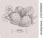 Sweet Strawberry  Hand Drawn...