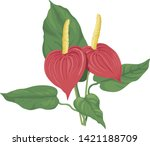 flowers of new zealand southern ... | Shutterstock .eps vector #1421188709