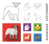 isolated object of sheep and... | Shutterstock .eps vector #1421246669