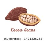 cocoa beans isolated on white...   Shutterstock .eps vector #1421326253