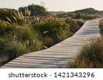 Wooden Footbridge In The Salt...