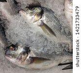 Small photo of Macro Photo food fresh-frozen Gilt-head bream fish. Texture background sea fish dorade