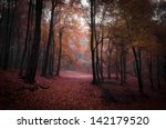 trees with red leaves in a... | Shutterstock . vector #142179520