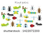 find pairs of identical... | Shutterstock .eps vector #1422072203