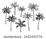 collection of palm trees. ink... | Shutterstock .eps vector #1422552776