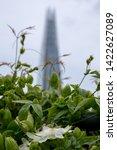 london uk  june 2019. view from ... | Shutterstock . vector #1422627089