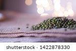 green bean asian on blurred... | Shutterstock . vector #1422878330
