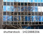 bare tree branches with dry... | Shutterstock . vector #1422888206