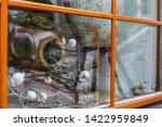 austria  hallstatt  august 1 ... | Shutterstock . vector #1422959849