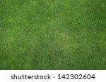 Green Grass Texture Or...