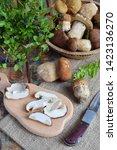 Porcini. Chopped White Mushroo...