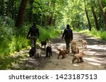 Stock photo dog walk service young man and woman unrecognizable back view walking out the dogs in vincennes 1423187513