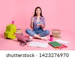 Small photo of Portrait lovely lady teen teenager sit have thought thoughtful imagine guess computer laptop use user question isolated checked shirt trendy stylish jeans denim pink background