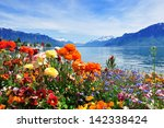 Swiss Landscape  Flowers ...