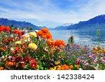 Colorful Flowers In Bloom  Lak...