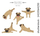 yoga dogs poses and exercises.... | Shutterstock .eps vector #1423564250