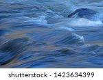 Lehardy Rapids Abstract  ...