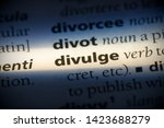 Small photo of divulge word in a dictionary. divulge concept.