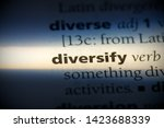 Small photo of diversify word in a dictionary. diversify concept.