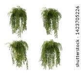 3d Rendering Of Fern Tree