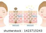 infographic skin cell turnover... | Shutterstock .eps vector #1423715243