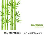 Bamboo Background With Place...