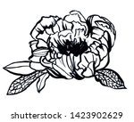peony drawn with ink  black... | Shutterstock . vector #1423902629