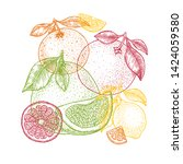 various citrus design template. ... | Shutterstock .eps vector #1424059580
