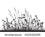 Stock vector vector wild herbs and flowers silhouette background 142420204