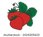 three colored juicy red...   Shutterstock .eps vector #1424205623