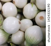 Small photo of Macro Photo food vegetable white onion. Texture background fruit vegetable white onion