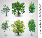realistic tree set with... | Shutterstock .eps vector #142436548