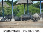 a family of rhino in the zoo  ...   Shutterstock . vector #1424878736