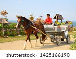 Horse And A Male Cossack In A...
